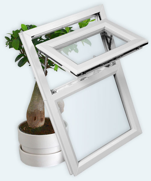 Window and Plant - green technology